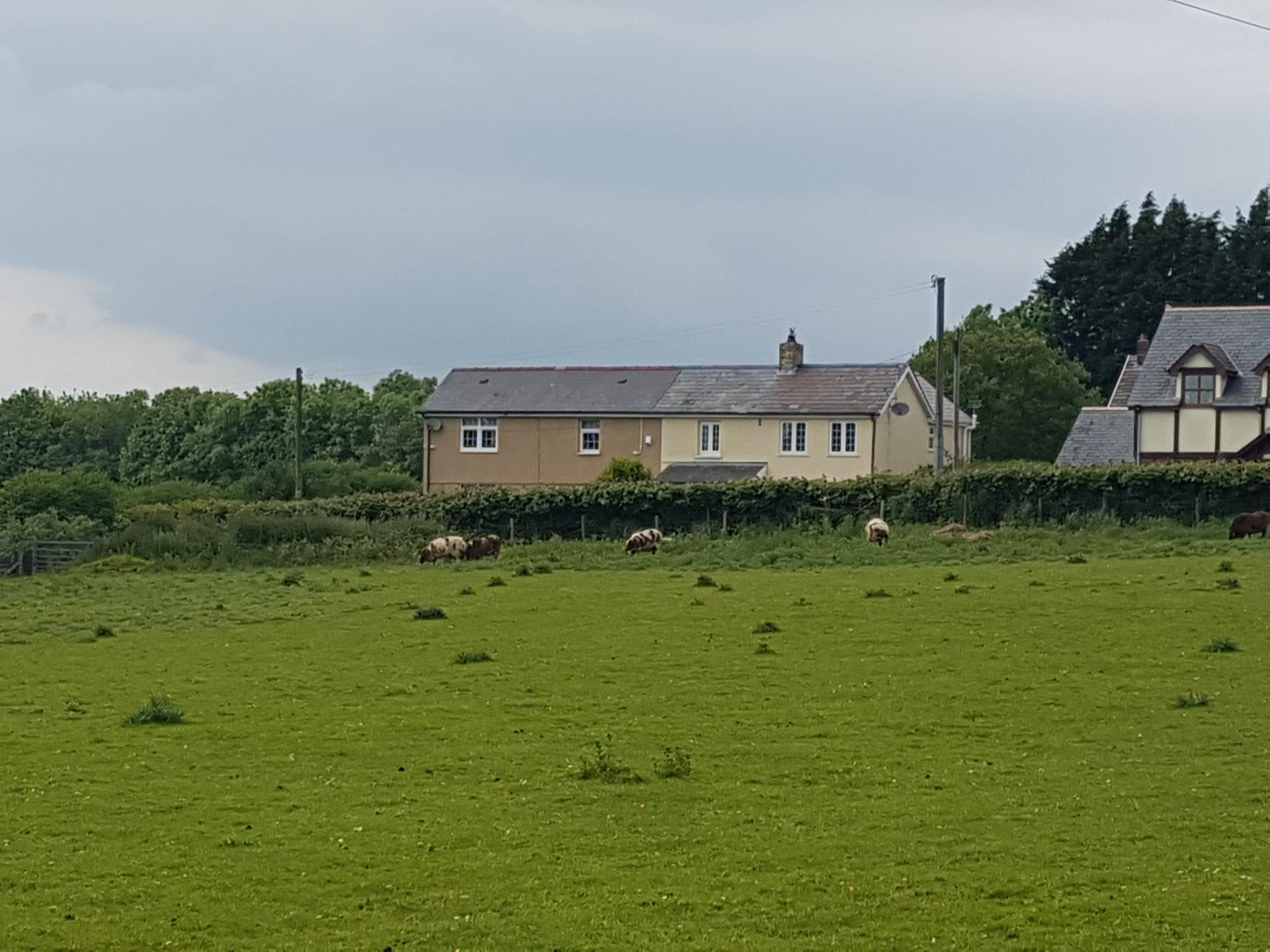 Property For Sale Llanharry